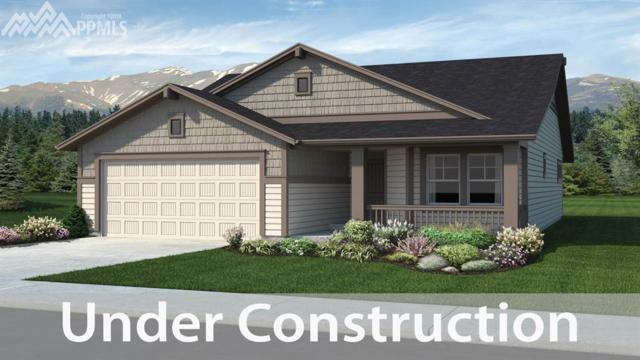 15705 Blue Pearl Court, Monument, CO 80132 (#5217447) :: Fisk Team, RE/MAX Properties, Inc.