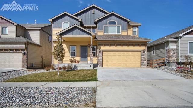 914 Deschutes Drive, Colorado Springs, CO 80921 (#5218183) :: Action Team Realty