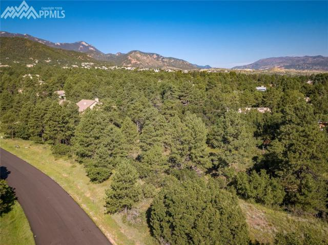1720 Brantfeather Grove, Colorado Springs, CO 80906 (#5219038) :: Venterra Real Estate LLC