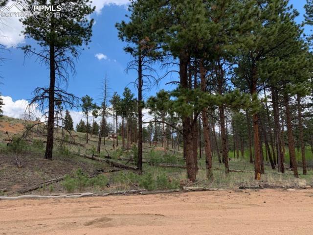 268 Brooks Lane, Sedalia, CO 80135 (#5219881) :: Compass Colorado Realty