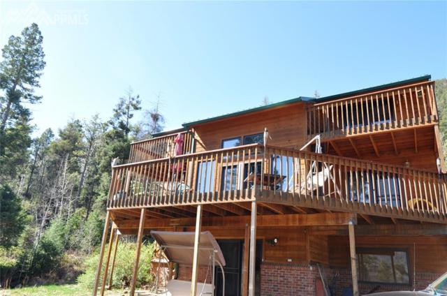 9255 Picabo Road, Cascade, CO 80809 (#5220867) :: The Treasure Davis Team