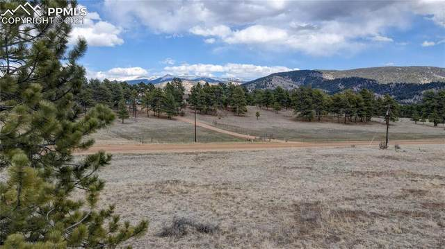378 High Chateau Road, Florissant, CO 80816 (#5222546) :: The Daniels Team
