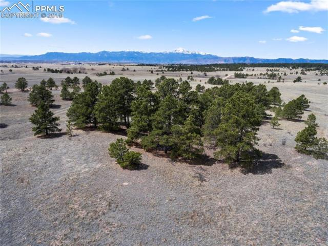 9172 Nature Refuge Way, Colorado Springs, CO 80908 (#5227527) :: Perfect Properties powered by HomeTrackR