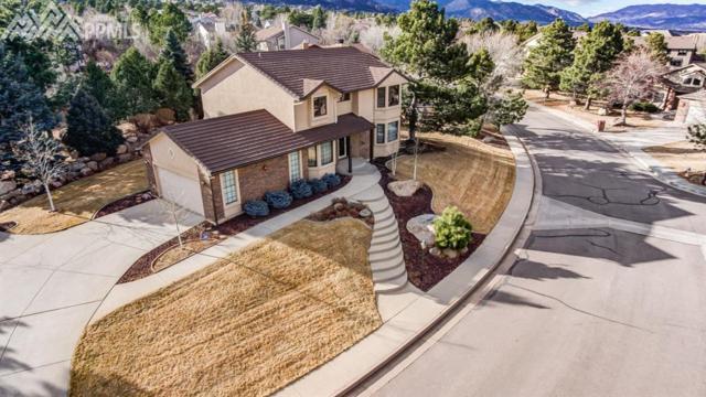 155 Lowick Drive, Colorado Springs, CO 80906 (#5229301) :: 8z Real Estate