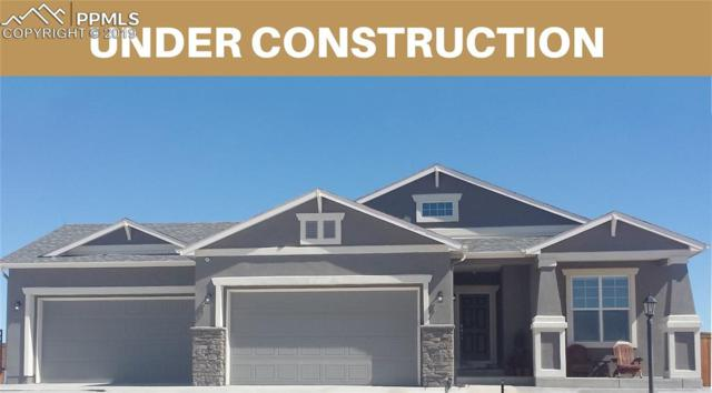 10023 Henman Terrace, Peyton, CO 80831 (#5229348) :: Tommy Daly Home Team