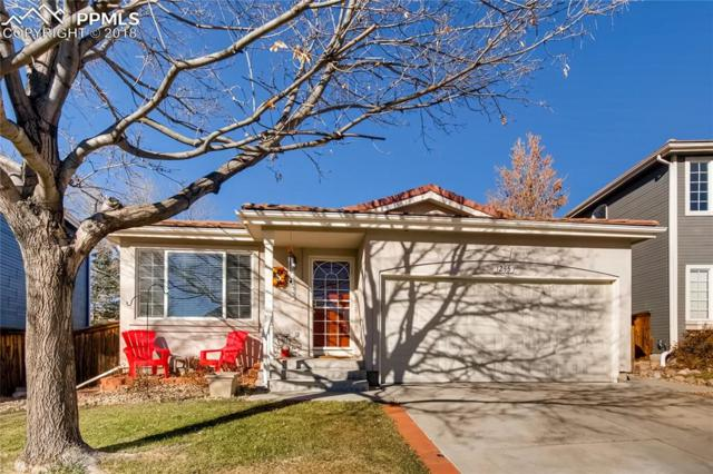 1255 Briarhollow Way, Highlands Ranch, CO 80129 (#5230044) :: The Hunstiger Team