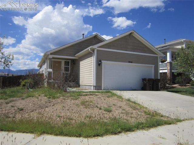7978 Calamint Court, Fountain, CO 80817 (#5233196) :: Fisk Team, RE/MAX Properties, Inc.