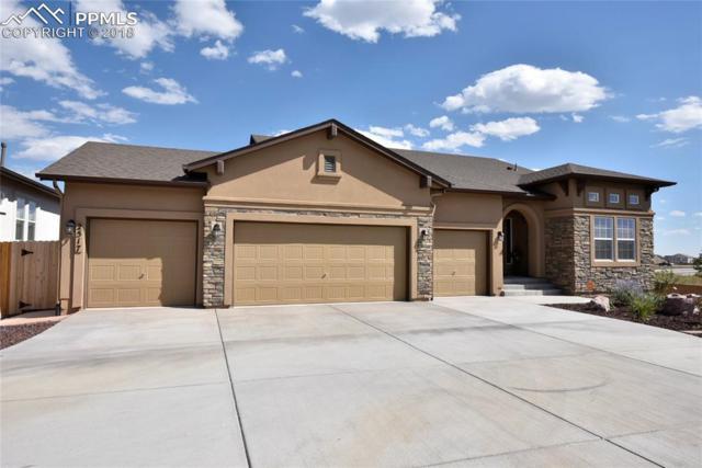 2517 Half Chaps Court, Colorado Springs, CO 80922 (#5235773) :: The Treasure Davis Team
