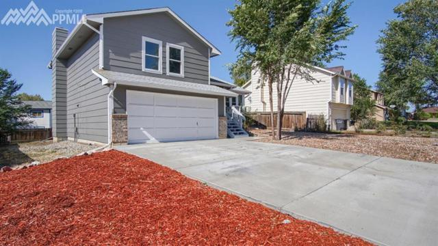 134 Hoedown Circle, Fountain, CO 80817 (#5241075) :: 8z Real Estate