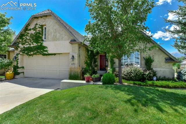 1610 Golden Hills Road, Colorado Springs, CO 80919 (#5242044) :: CC Signature Group