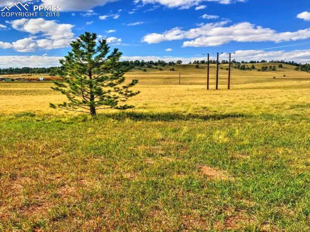 TBD Homestead Lane, Florissant, CO 80816 (#5243613) :: The Kibler Group