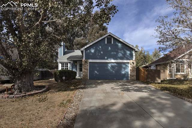 3952 Breaking Dawn Street, Colorado Springs, CO 80925 (#5247327) :: Perfect Properties powered by HomeTrackR