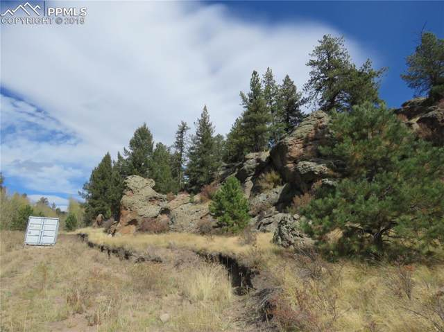 412 Canyon Drive, Florissant, CO 80816 (#5249871) :: Perfect Properties powered by HomeTrackR