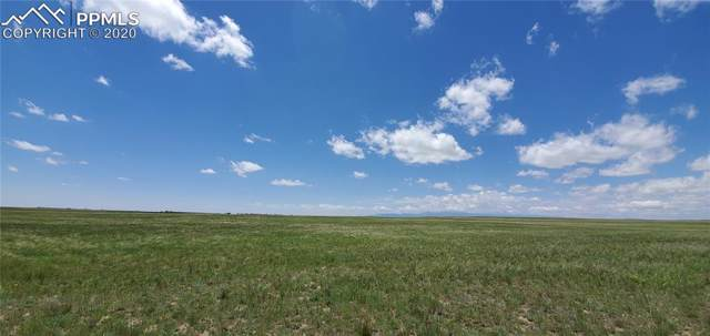 17905 Judge Orr Road, Peyton, CO 80831 (#5250433) :: Action Team Realty