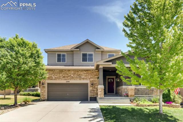 2394 Thistle Court, Castle Rock, CO 80109 (#5250745) :: Tommy Daly Home Team