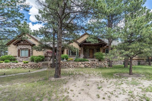 18881 Pagentry Place, Monument, CO 80132 (#5250798) :: Jason Daniels & Associates at RE/MAX Millennium