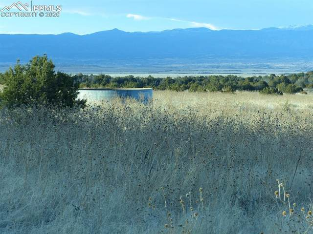 TBD L13 Newton Road, Pueblo, CO 81002 (#5260190) :: Finch & Gable Real Estate Co.