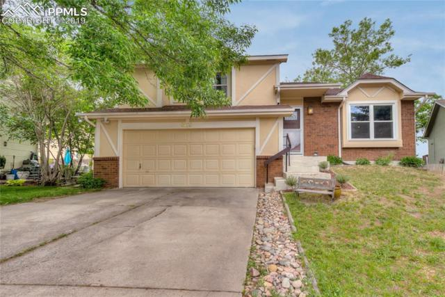 6420 Amethyst Court, Colorado Springs, CO 80918 (#5260690) :: Tommy Daly Home Team
