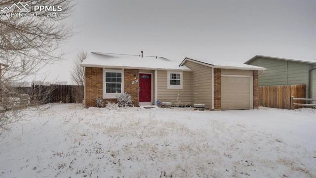 4915 Hunters Run, Colorado Springs, CO 80911 (#5260728) :: 8z Real Estate