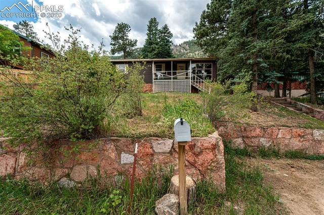 9955 Mesa Road, Cascade, CO 80809 (#5262708) :: Finch & Gable Real Estate Co.