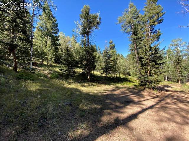75 Waterfall Trail, Manitou Springs, CO 80829 (#5263942) :: The Kibler Group