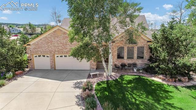 97 Seagull Circle, Colorado Springs, CO 80921 (#5265861) :: The Harling Team @ Homesmart Realty Group