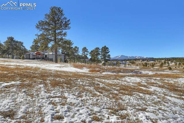17251 Jackson Ranch Court, Monument, CO 80132 (#5272291) :: Action Team Realty