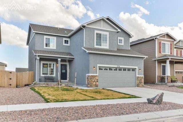 7731 Dry Willow Way, Colorado Springs, CO 80908 (#5273897) :: The Peak Properties Group