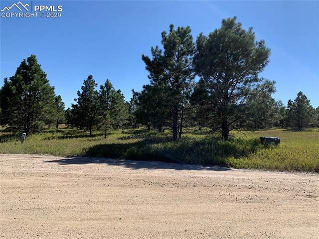 18435 Shady Knoll Court, Peyton, CO 80831 (#5277398) :: 8z Real Estate