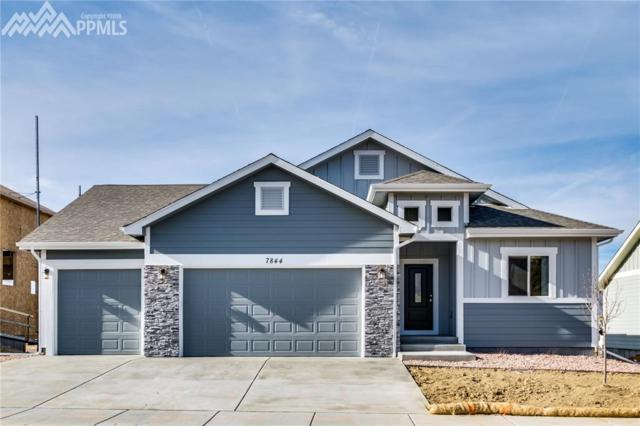 7793 Pinfeather Drive, Fountain, CO 80817 (#5277714) :: The Hunstiger Team