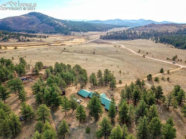 35341 County Road 77, Lake George, CO 80827 (#5281323) :: The Treasure Davis Team | eXp Realty