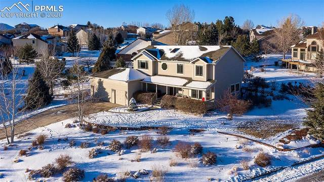 15205 Churchill Place, Colorado Springs, CO 80921 (#5282104) :: The Daniels Team
