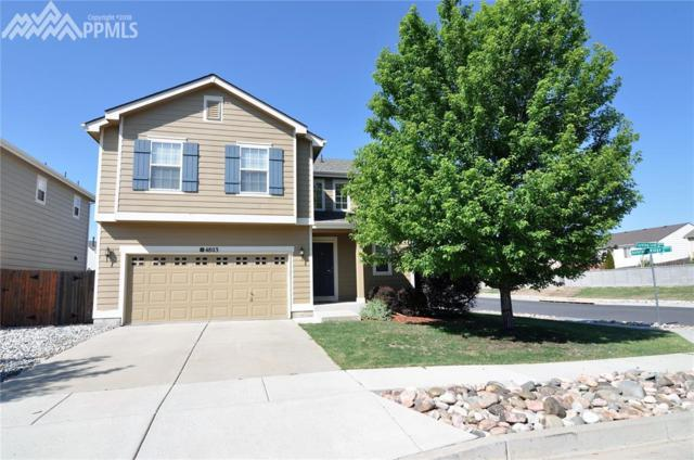 4803 Turning Leaf Way, Colorado Springs, CO 80922 (#5285834) :: Action Team Realty