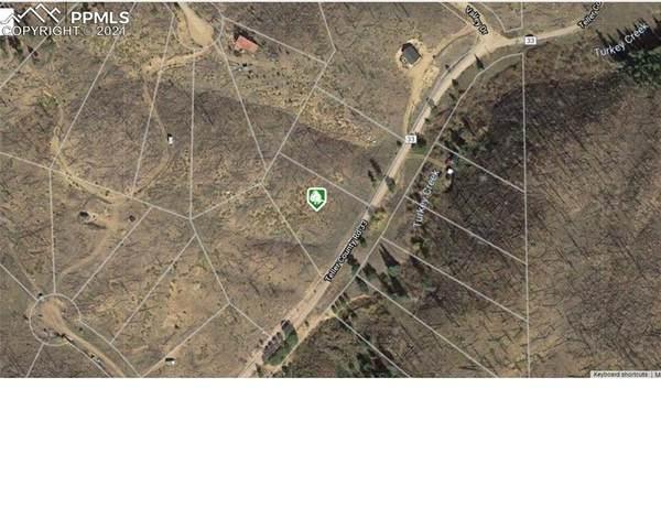 3489 Lakeview, Florissant, CO 80816 (#5286173) :: Springs Home Team @ Keller Williams Partners