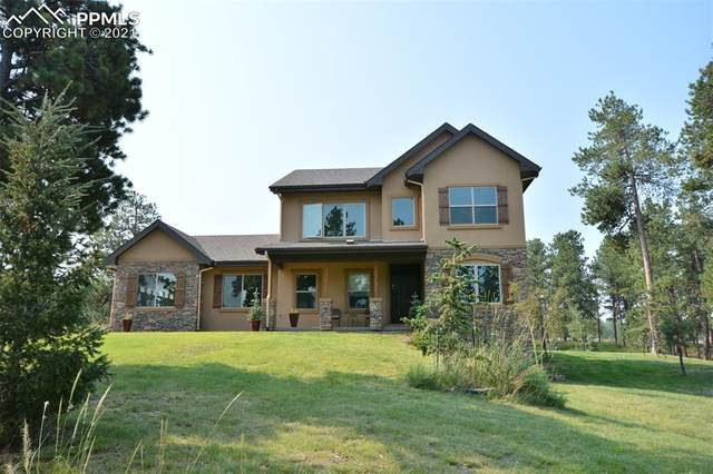 11480 Last Stanley Point, Colorado Springs, CO 80908 (#5288561) :: Tommy Daly Home Team