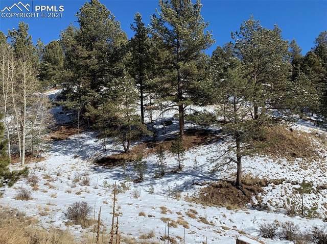 204 Idlewild Drive, Cripple Creek, CO 80813 (#5288838) :: The Treasure Davis Team