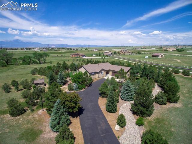 8570 Velvet Antler Way, Peyton, CO 80831 (#5289736) :: Action Team Realty