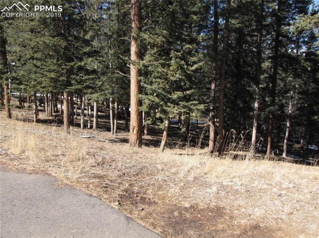 240 Iron Eagle Point, Woodland Park, CO 80863 (#5294293) :: The Treasure Davis Team