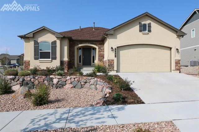 6058 Rowdy Drive, Colorado Springs, CO 80924 (#5299730) :: Jason Daniels & Associates at RE/MAX Millennium