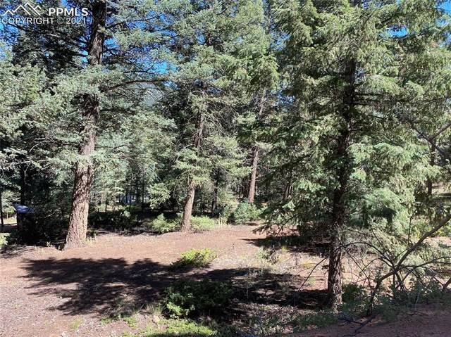 L8 Summer Haven Drive, Woodland Park, CO 80863 (#5300416) :: Action Team Realty