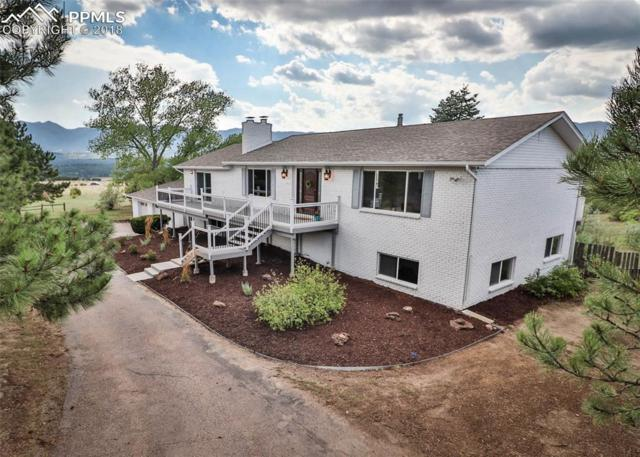 695 Struthers Loop, Colorado Springs, CO 80921 (#5303265) :: Action Team Realty