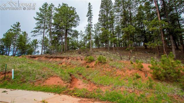 1200 Cottontail Trail, Woodland Park, CO 80863 (#5303680) :: Tommy Daly Home Team