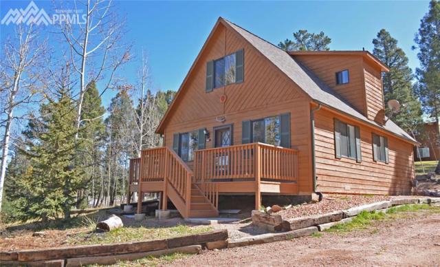 166 Banner Trail, Florissant, CO 80816 (#5308880) :: 8z Real Estate