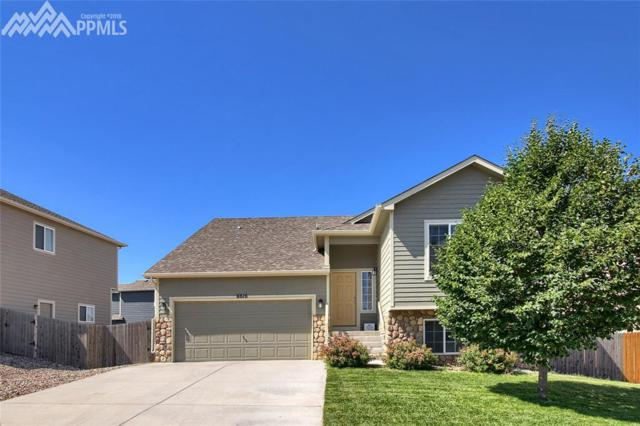6616 Passing Sky Drive, Colorado Springs, CO 80911 (#5310265) :: The Kibler Group
