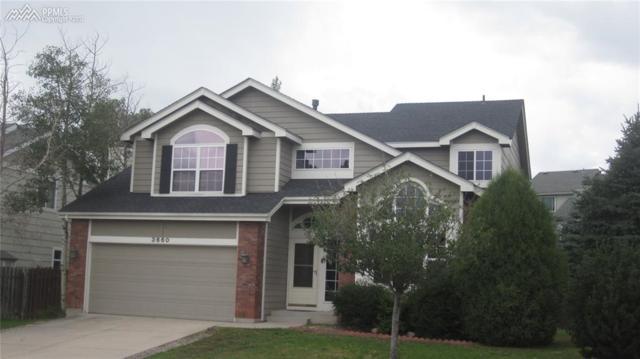3660 Birnamwood Drive, Colorado Springs, CO 80920 (#5318903) :: 8z Real Estate