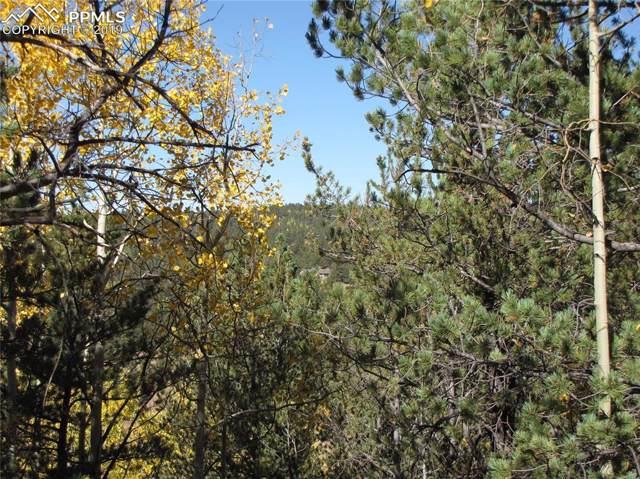 741 Timber Ridge Road, Divide, CO 80814 (#5321803) :: The Peak Properties Group