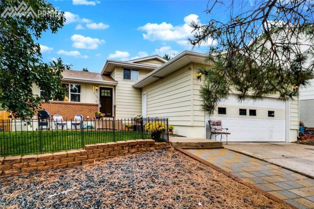 3104 Sapporo Court, Colorado Springs, CO 80918 (#5321804) :: 8z Real Estate