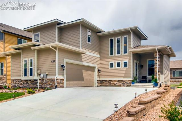 6788 Black Saddle Drive, Colorado Springs, CO 80924 (#5322160) :: The Treasure Davis Team