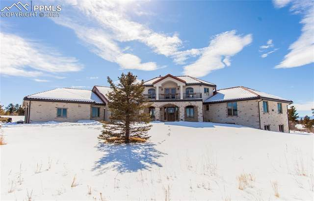 8682 Burning Tree Drive, Franktown, CO 80116 (#5330249) :: Tommy Daly Home Team