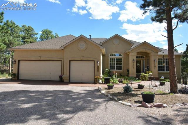 935 Pinenut Court, Colorado Springs, CO 80921 (#5330515) :: 8z Real Estate